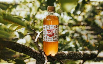 POMPOM POP